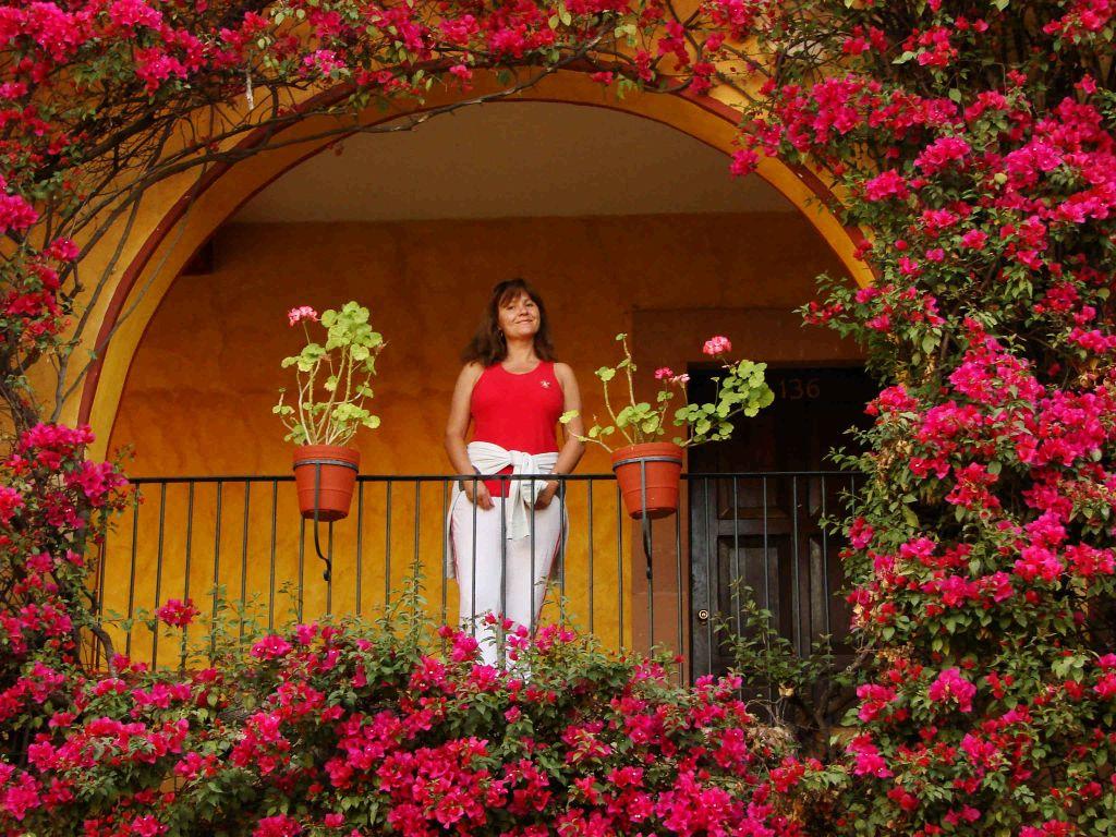 Новый год 2019 на Тенерифе. Цены на новогодние туры рекомендации
